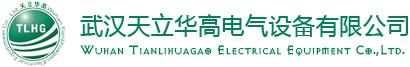 这是关于武汉天立华高电气设备有限公司的logo图片,欢迎大家来公司网站!